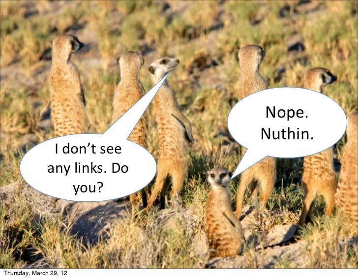 Nope.                                          Nuthin.                I don't see                any links. Do...