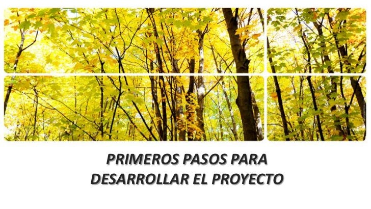 PRIMEROS PASOS PARADESARROLLAR EL PROYECTO