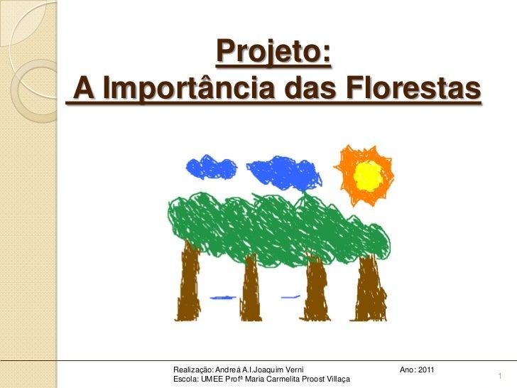 Projeto:A Importância das Florestas      Realização: Andreá A.I.Joaquim Verni                Ano: 2011      Escola: UMEE P...