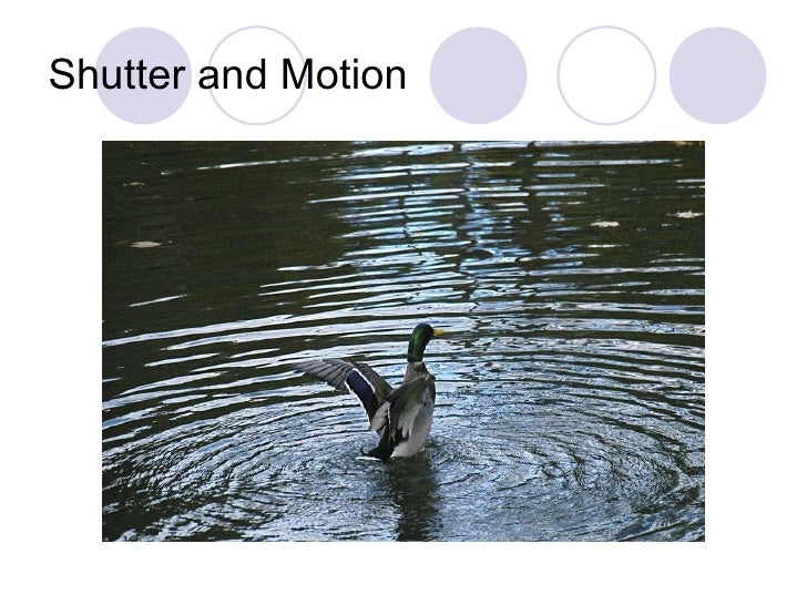 Shutter and Motion