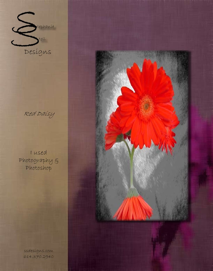 S S     tephanie         toll   Designs      Red Daisy       I used Photography &   Photoshop      ssdesigns.com  614.370....