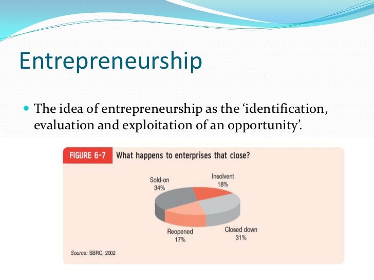 Portfolio entrepreneurship Slide 2