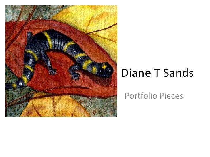 Diane T Sands Portfolio Pieces