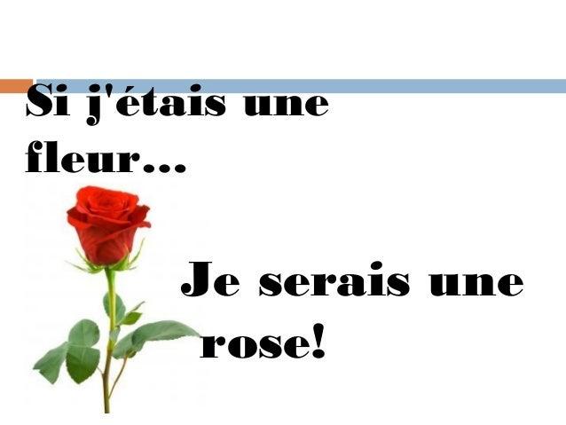 Si jétais unefleur…       Je serais une        rose!