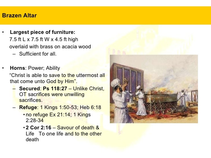 Portrait Of Jesus In The Tabernacle 5