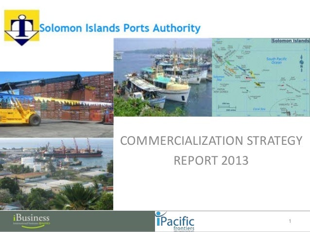 COMMERCIALIZATION STRATEGY REPORT 2013 1