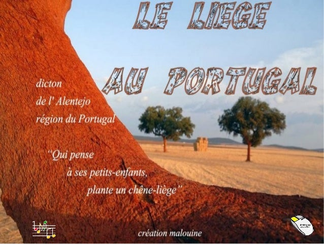 Avec près de 157.000 tonnes de liège, produites chaque année Le Portugal est le premier producteur au monde de ce matériau...