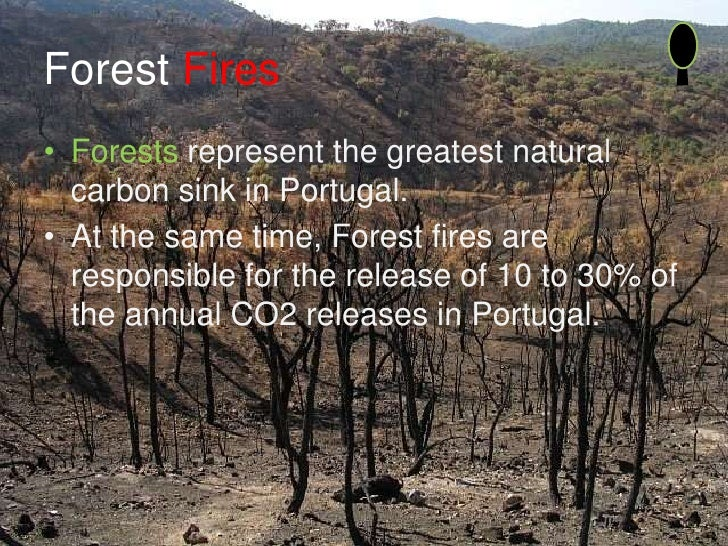 Forest Fires • Forests represent the greatest natural   carbon sink in Portugal. • At the same time, Forest fires are   re...