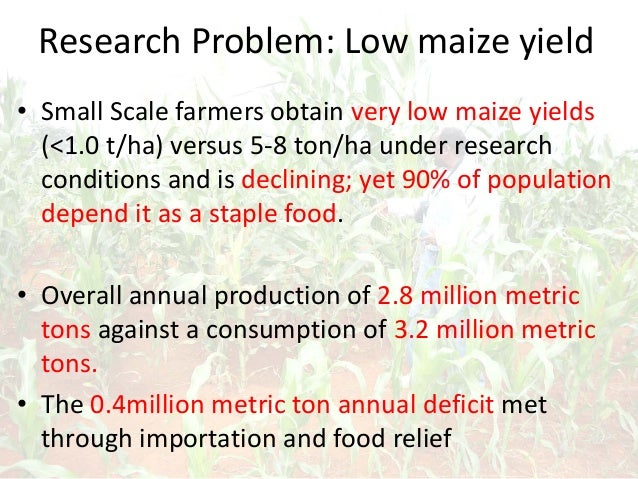 Research Problem: Low maize yield • Small Scale farmers obtain very low maize yields (<1.0 t/ha) versus 5-8 ton/ha under r...