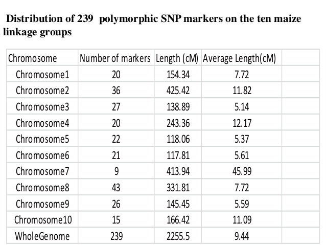 Distribution of 239 polymorphic SNP markers on the ten maize linkage groups Chromosome Numberof markers Length (cM) Averag...