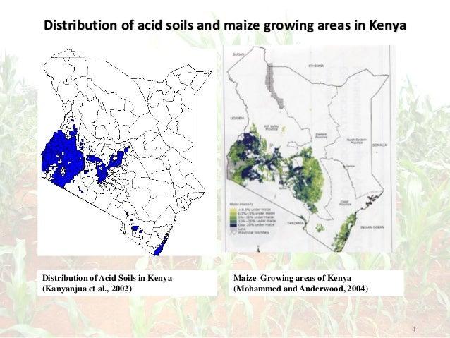 Distribution of acid soils and maize growing areas in Kenya 4 Distribution of Acid Soils in Kenya (Kanyanjua et al., 2002)...