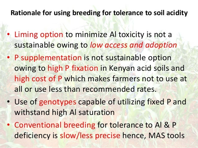 Rationale for using breeding for tolerance to soil acidity • Liming option to minimize Al toxicity is not a sustainable ow...