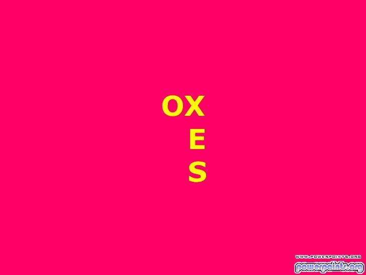 OX   E   S