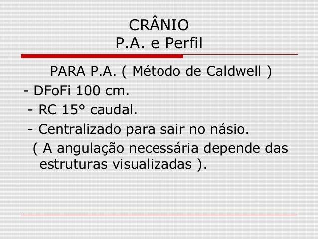 CRÂNIO P.A. e Perfil PARA P.A. ( Método de Caldwell ) - DFoFi 100 cm. - RC 15° caudal. - Centralizado para sair no násio. ...