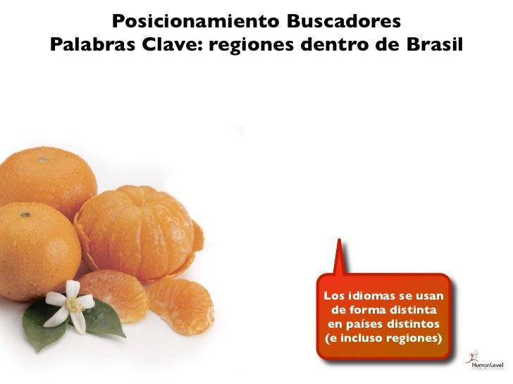 Posicionamiento BuscadoresPalabras Clave: regiones dentro de Brasil                           Los idiomas se usan         ...