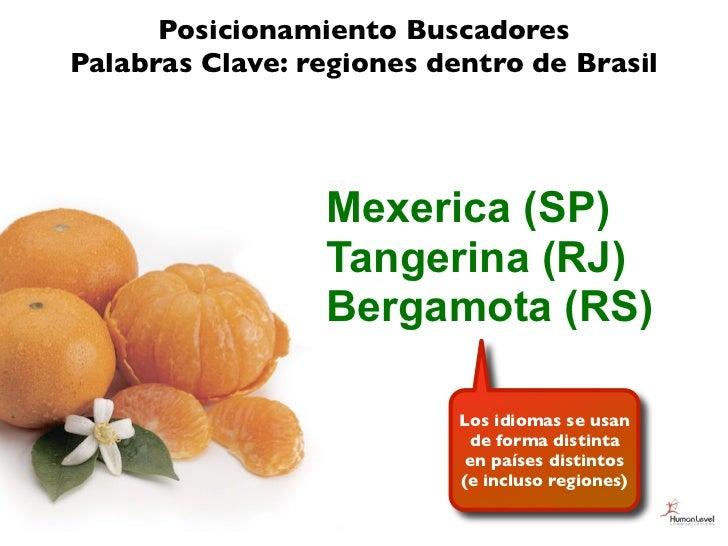 Posicionamiento BuscadoresPalabras Clave: regiones dentro de Brasil                 Mexerica (SP)                 Tangerin...