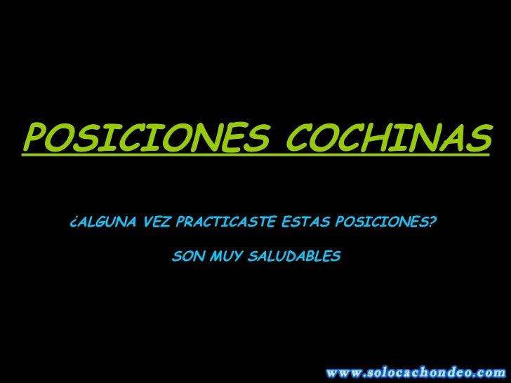 POSICIONES COCHINAS ¿ALGUNA VEZ PRACTICASTE ESTAS POSICIONES? SON MUY SALUDABLES