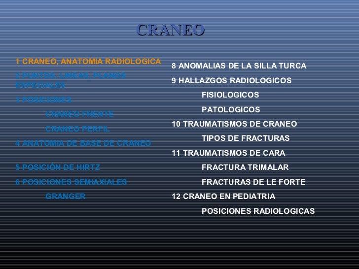 CRANEO1 CRANEO, ANATOMIA RADIOLOGICA                                 8 ANOMALIAS DE LA SILLA TURCA2 PUNTOS, LINEAS, PLANOS...