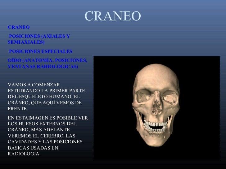 CRANEOCRANEOPOSICIONES (AXIALES YSEMIAXIALES)POSICIONES ESPECIALESOÍDO (ANATOMÍA, POSICIONES,VENTANAS RADIOLÓGICAS)VAMOS A...