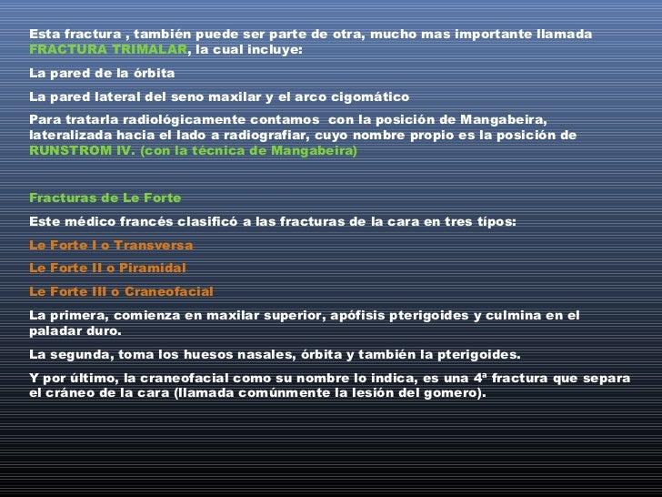 ESQUEMA DE LAS FRACTURAS DE LE FORTLE FORT 1