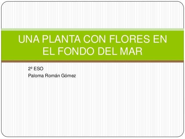 UNA PLANTA CON FLORES EN EL FONDO DEL MAR 2º ESO Paloma Román Gómez