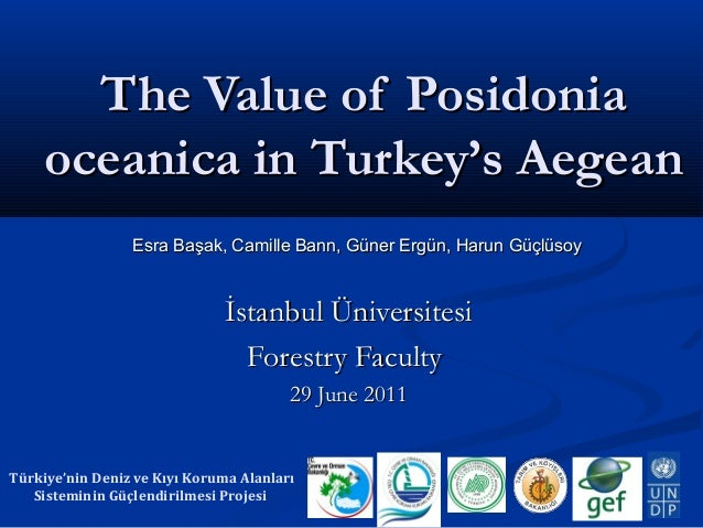 The Value of Posidonia oceanica in Turkey's Aegean Esra Başak, Camille Bann, Güner Ergün, Harun Güçlüsoy  İstanbul Ünivers...
