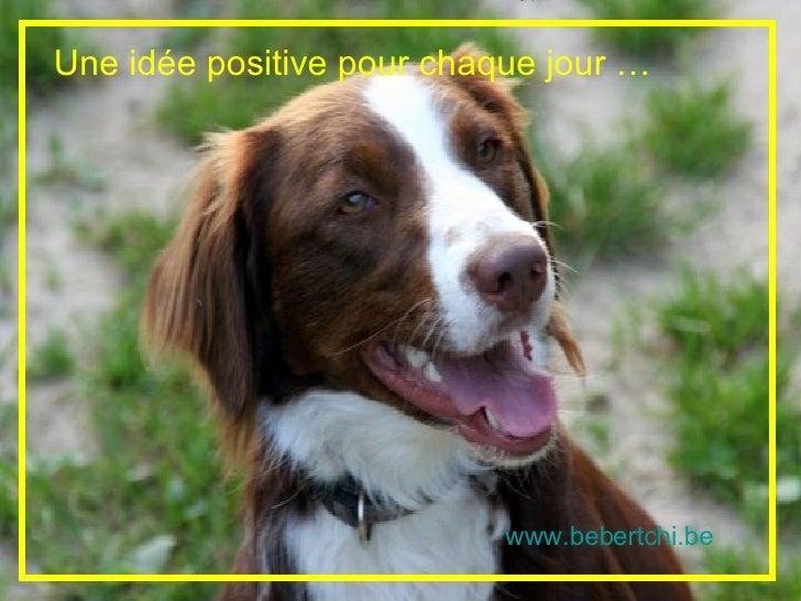 Une idée positive pour chaque jour …                                www.bebertchi.be