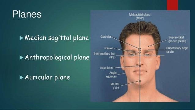 Planes  Median sagittal plane  Anthropological plane  Auricular plane