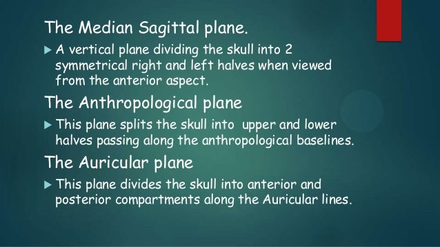 The Median Sagittal plane.  A vertical plane dividing the skull into 2 symmetrical right and left halves when viewed from...