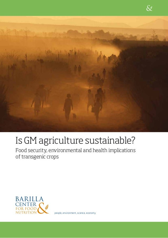 Is GM agriculture sustainable? Food security, environmental and health implications of transgenic crops people, environmen...