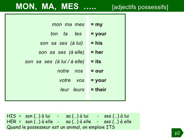 les adjectifs possessifs en anglais pdf
