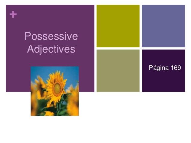 + Possessive Adjectives Página 169