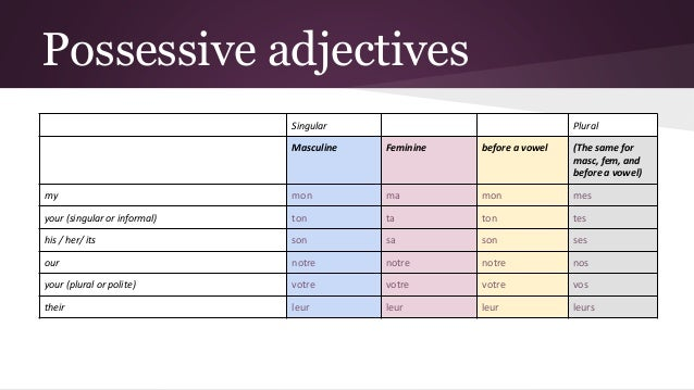 Possessive adjectives in French 3