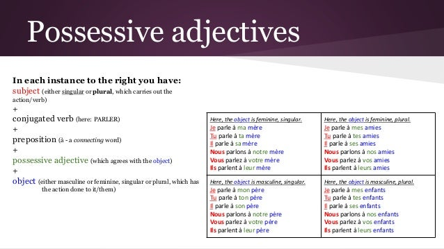 Possessive adjectives in French 4