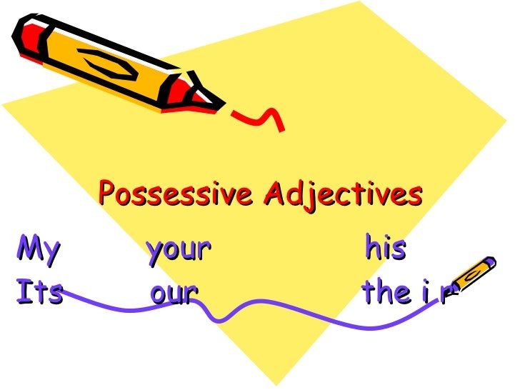 Possessive Adjectives My  your  his  Its  our  the i r