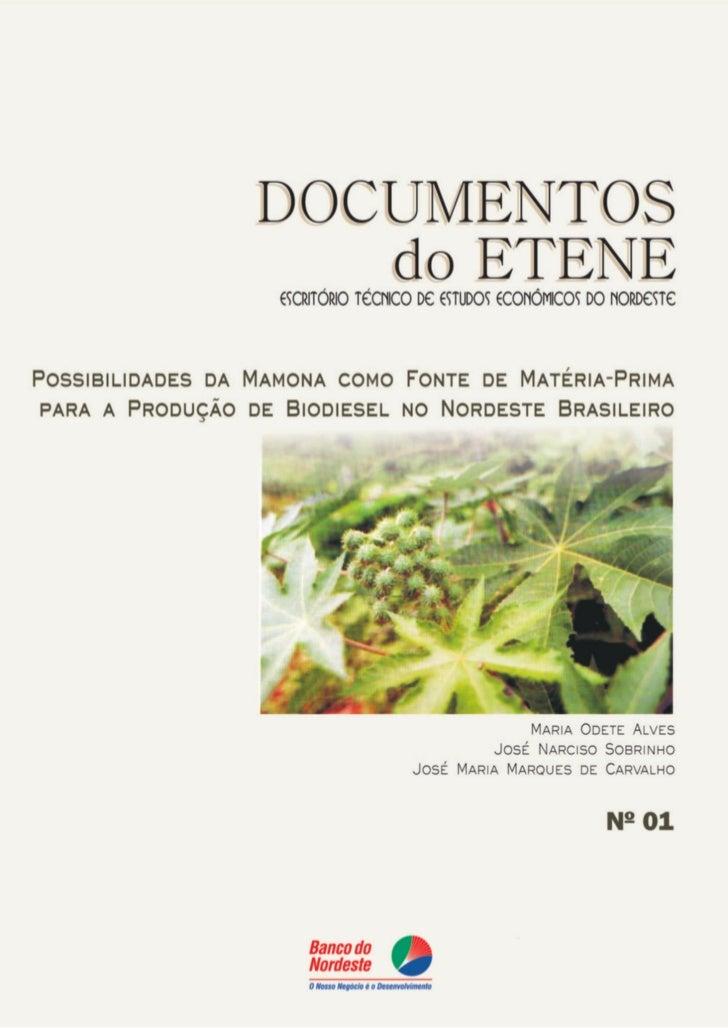 POSSIBILIDADES DA MAMONA COMO           MATÉRIA              TÉRIA-PRIMA PARA FONTE DE MATÉRIA-PRIMA PARA A   PRODUÇÃO DE ...
