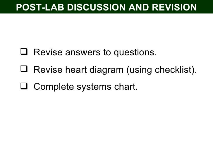 Post lab guide heart dissection student post lab discussion and revision ullirevise answers to questions ccuart Image collections