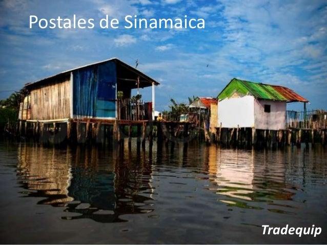 Postales de Sinamaica Tradequip