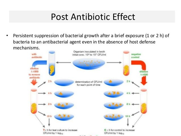 Antibiotic Resistance: A Global Threat