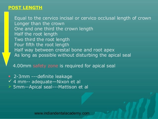 POST LENGTH  Equal to the cervico incisal or cervico occlusal length of crown  Longer than the crown  One and one third th...