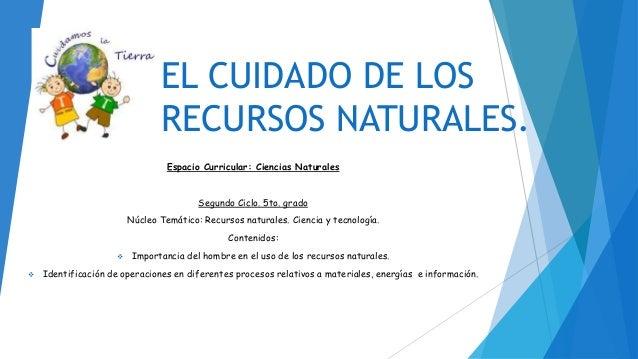 El cuidado de los recursos naturales - Aromatizantes naturales para la casa ...
