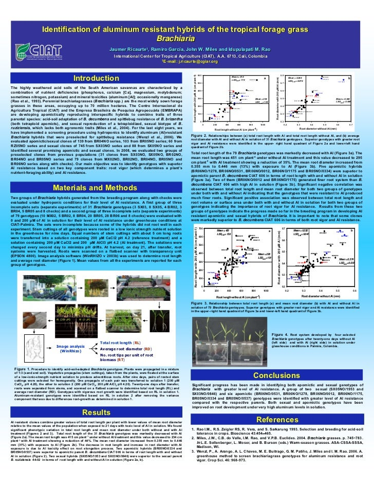 Identification of aluminum resistant hybrids of the tropical forage grass                                                 ...