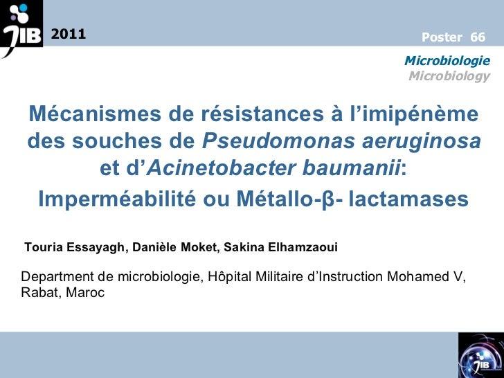 Mécanismes de résistances à l'imipénème des souches de  Pseudomonas aeruginosa  et d' Acinetobacter baumanii : Imperméabil...