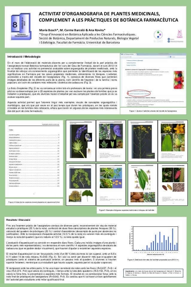 Figura 3. Exemples d'algunes espècies medicinals o tòxiques de l'activitat. ACTIVITAT D'ORGANOGRAFIA DE PLANTES MEDICINALS...