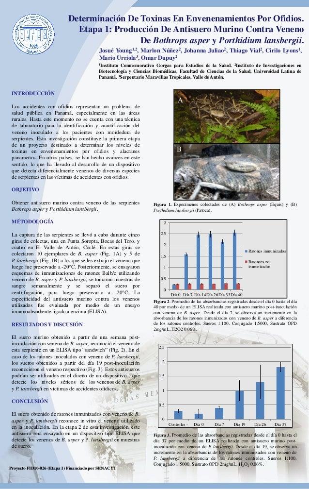 Determinación De Toxinas En Envenenamientos Por Ofidios.                              Etapa 1: Producción De Antisuero Mur...