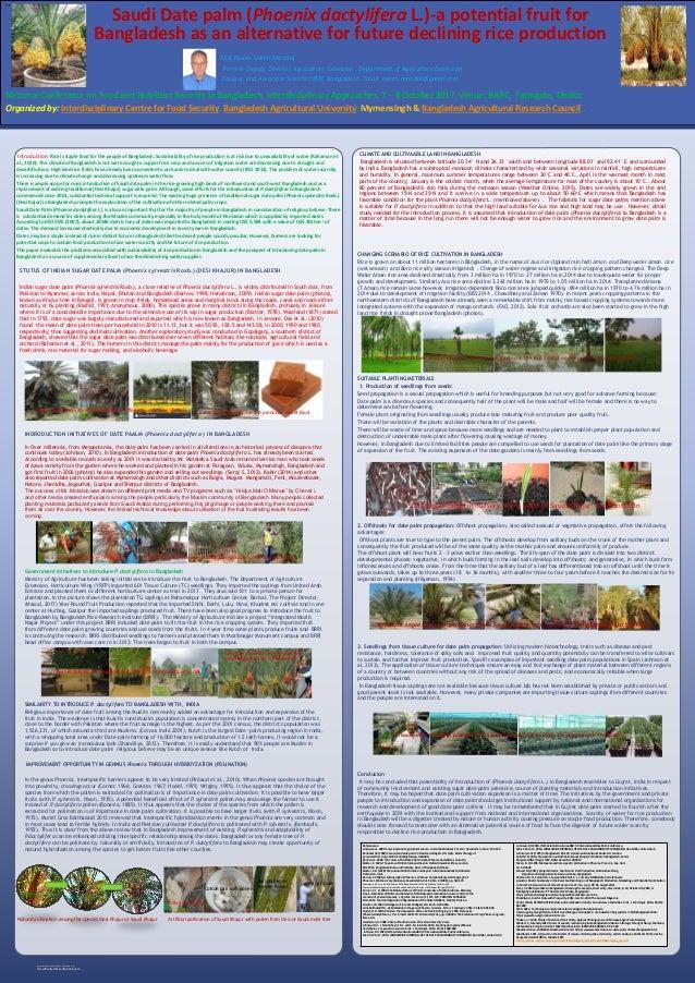 Bangladesh dating site in de VS