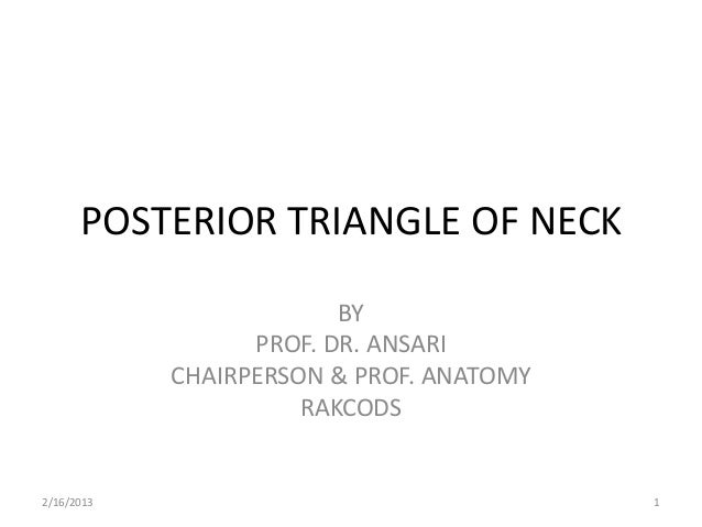 POSTERIOR TRIANGLE OF NECK                         BY                  PROF. DR. ANSARI            CHAIRPERSON & PROF. ANA...