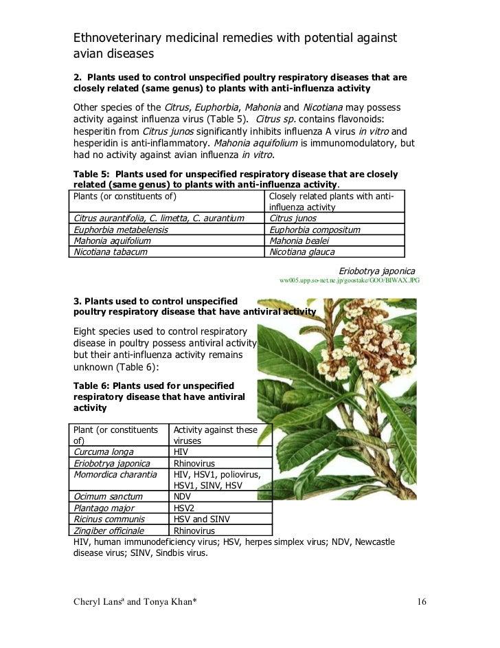 Influenza scientific name genus and species