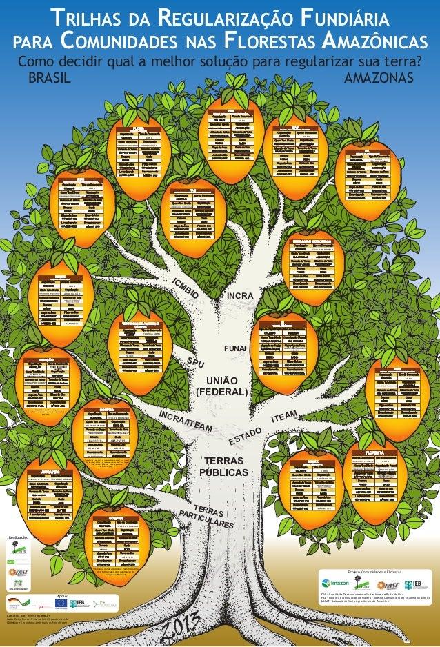 Trilhas da Regularização Fundiáriapara Comunidades nas Florestas AmazônicasICMBioComo decidir qual a melhor solução para r...
