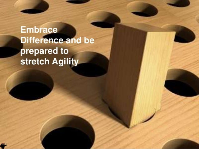 Embrace    Difference and be    prepared to    stretch Agility|